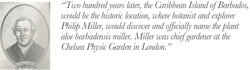 Phillip Miller; world famous botanist, gardeners and explorer.
